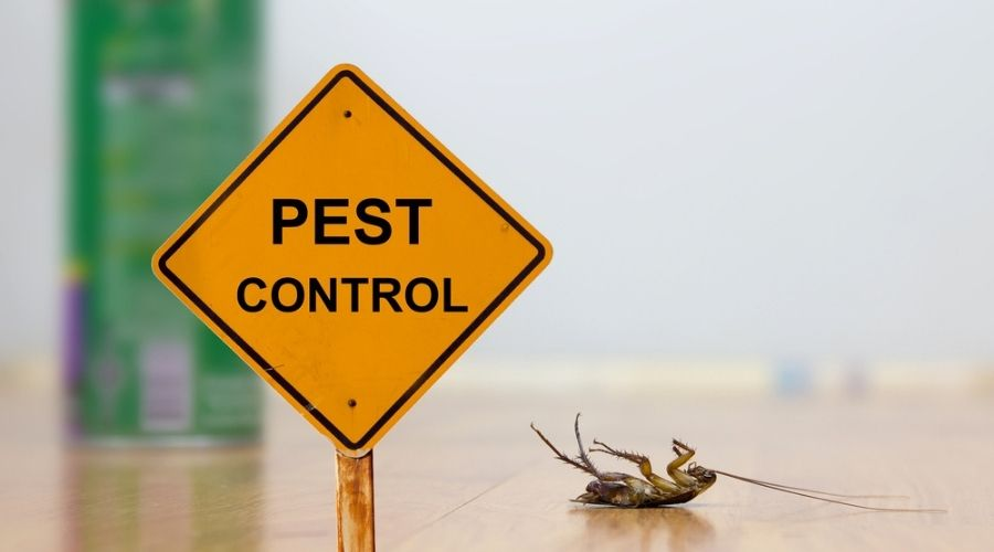are pest companies worth it header - pest control street sign with dead cockroach