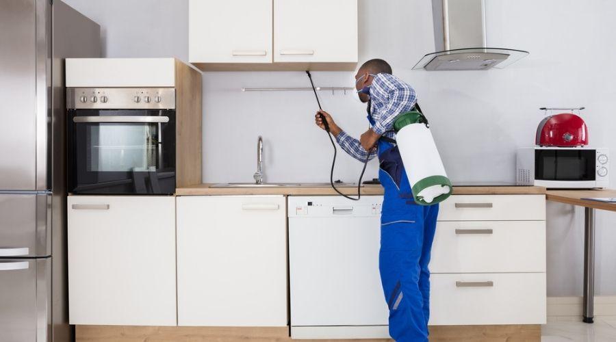 pest control tech spraying under cabinets in kitchen