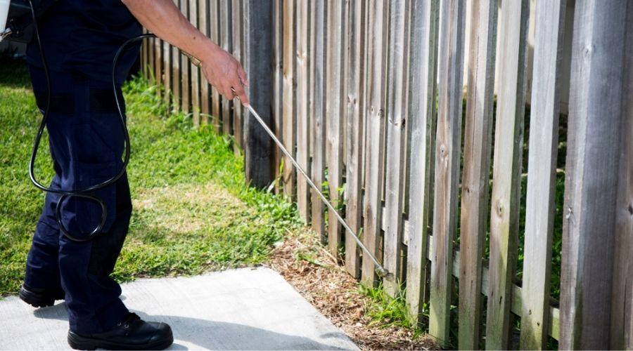 pest tech spraying around yard