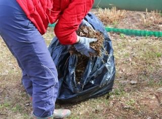 person in red coat and jeans cleaning leaves from yard - cultural pest control ipm