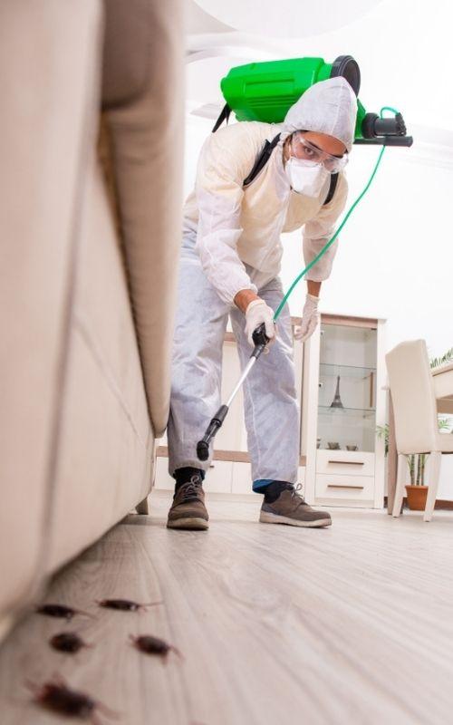 pest control tech spraying pesticide