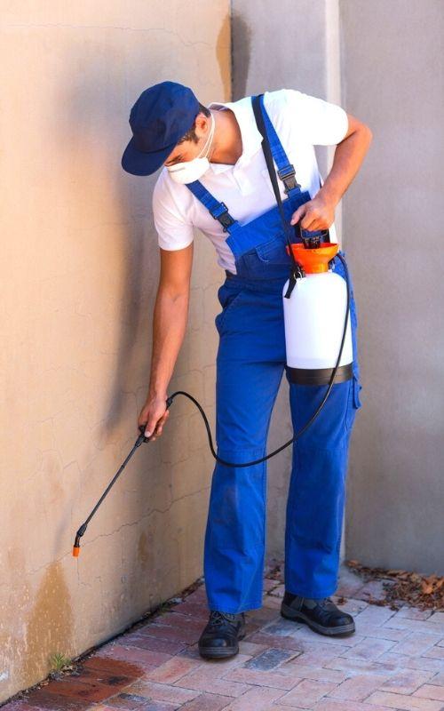 pest technician applying pesticide